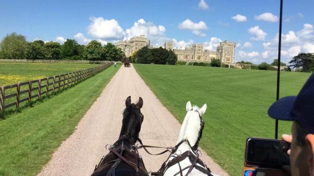 Einzigartiges Ambiente bei der Royal Windsor Horse Show. © Sportpferde Blumschein