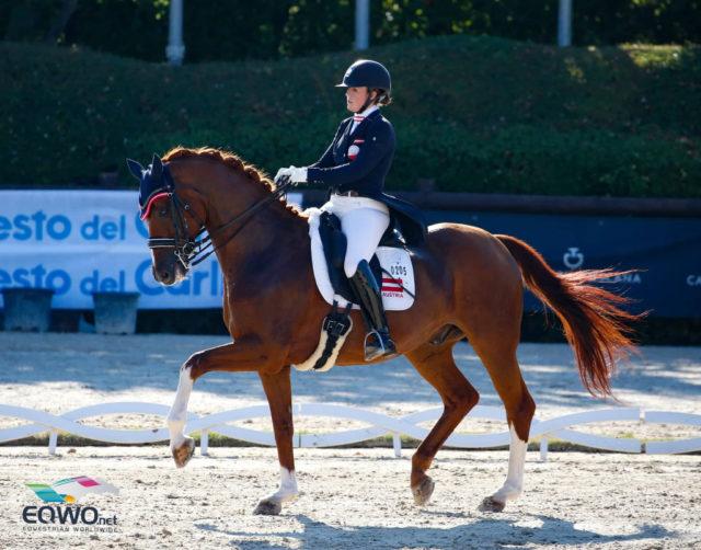 Unser Team-Küken Lena Abfalterer ritt mit ihrem Lesaro 2 und 65.615% auf den 16. Rang in der Children Preliminary Competition B. © Petra Kerschbaum