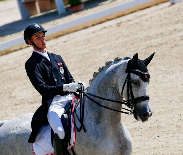 Eine Top-Leistung lieferte Felix Artner mit seinem Sisley Santino und 70.909 % auf Platz 21 ab. © Petra Kerschbaum