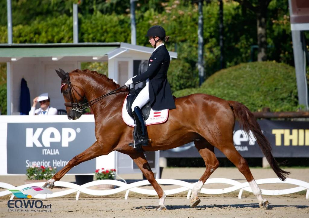 Jessica Schreder und Red Amber steuerten im Young Rider Teambewerb 66.677 % und Platz 16 bei. © Petra Kerschbaum
