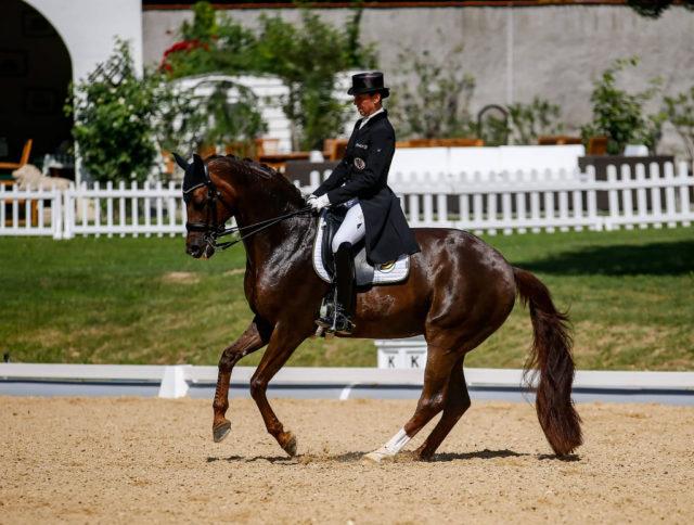 Belinda Weinbauer hat neben Fräulein Auguste MJ auch Fustanella OLD für die EM 2019 qualifiziert. © Petra Kerschbaum