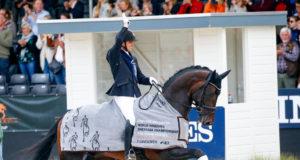 Der Weltmeister der fünfjährigen Dressurpferde 2019: Jovian (KWPN, Apache x Tango) unter Andreas Helgstrand (DEN). © Petra Kerschbaum
