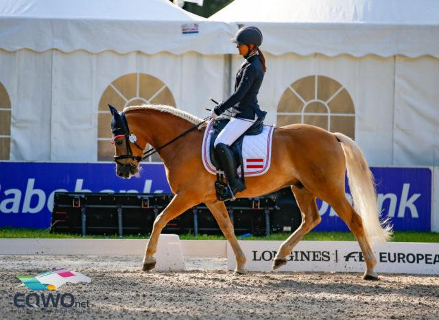 Michaela Kuntner und ihr erst 7-jähriger Haflinger Wallach Stockholm (Stelvio x Atlantic) erreichten einen Score von 65.061 %. © Petra Kerschbaum
