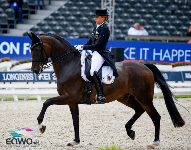 Beste Leistung des ersten Grand-Prix-Tages: Dorothee Schneider (Deutschland) und Showtime FRH. Das Duo scorte 80.233 %. © Petra Kerschbaum