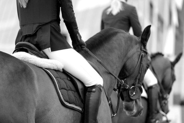 Sich mehr auf das eigene Pferd zu konzentrieren und statt zum Handy in die Pferdemähne zu greifen macht Sinn! © unsplash | Louise Pilgaard