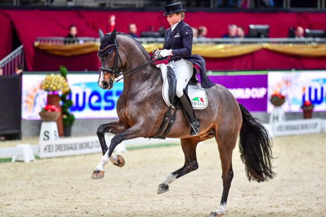 5.- 8.12.2019, Salzburg, Amadeus Horse Indoors © Fotoagentur Dill