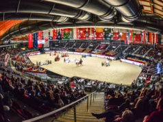 Die Amadeus Horse Indoors 2019 bietet am 1. Adventwochenende (5.-8.12.2019) im Messezentrum Salzburg wieder ein abwechslungsreiches Pferde- und Hundesportprogramm für Zuseher jeder Altersklasse. © Daniel Kaiser
