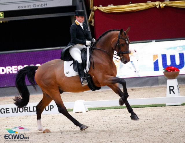 Dem Ehrentusch-Sohn Emilio zeigte unter seiner Reiterin Isabell Werth (GER) eine soouveräne Runde im Weltcup Grand Prix von Salzburg. © EQWO.net