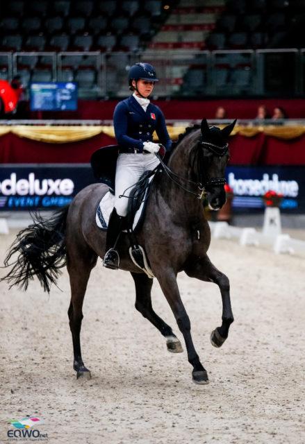 Estelle Wettstein (SUI) und West Side Story OLD überraschen im Grand Prix Spezial bei den Amadeus Horse Indoors mit Platz zwei und 71,277 %! © EQWO.net