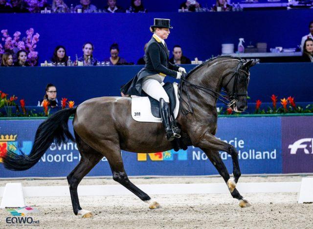 An den beiden führt kein Weg vorbei: Isabell Werth (GER) und Weihegold OLD gewinnen die Weltcup-Station in Amsterdam bereits zum fünften Mal in Serie. © Petra Kerschbaum