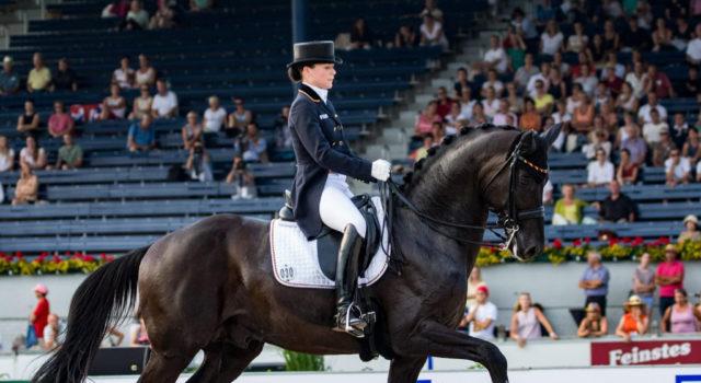 Desperados FRH, Olympiasieger und Vizeweltmeister, verstarb plötzlich an einem Aorten-Abriss. © Petra Kerschbaum