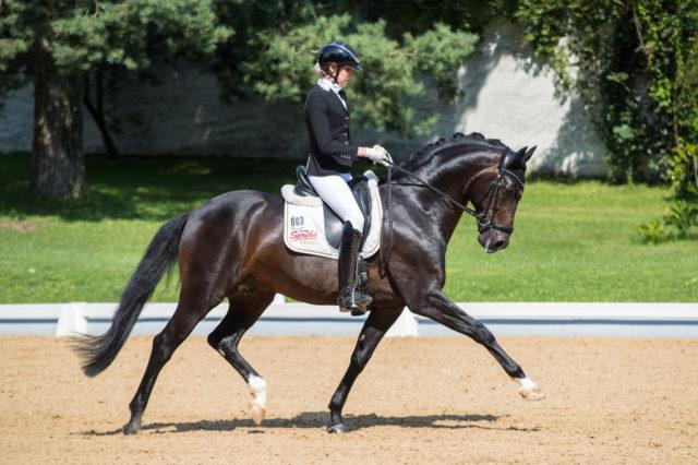 Erfolgreiches Wochenende für Sprehe-Reiterin Simone Pearce (AUS): das Finale der fünfjährigen Dressurpferde gewinnt sie mit Diamond First mit der Traumnote von 89,4%! © Michael Rzepa