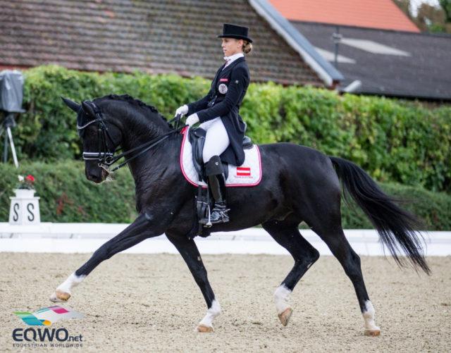 Gemeinsamer Höhepunkt von Karoline Valenta (NÖ) und ihrem Diego waren die Europameisterschaften 2019 in Rotterdam: 69,379%. © Petra Kerschbaum