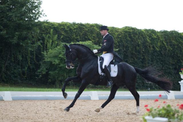 """""""Kür-Pferd"""" Fackeltanz OLD tanzte mit seinem Reiter Stefan Lehfellner (AUT/OÖ) mit Klängen zu Falco-Songs zu 77,305% in der Kür von Achleiten. © Achleiten"""