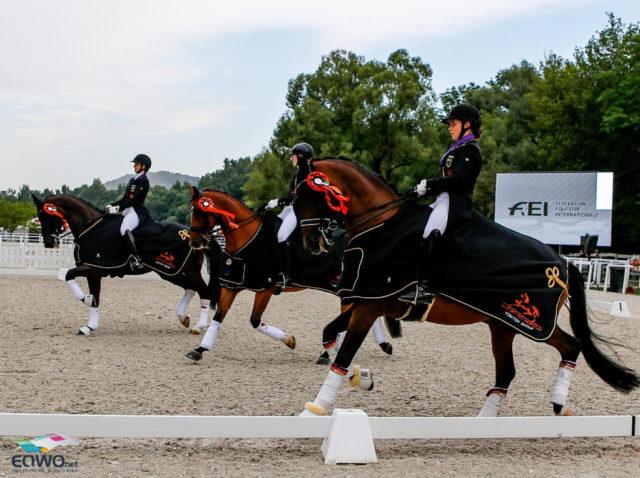 Ehrenrunde für die Sieger! Das deutsche Junioren Team gewinnt vor Dänemark und den Niederlanden. © Petra Kerschbaum