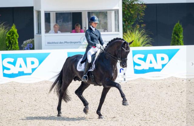 Glamourdale wird KWPN Hengst des Jahres 2020! © FB: Van Olst Horses