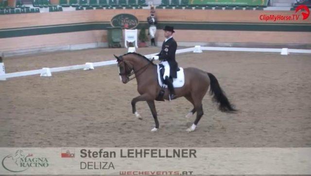 Olympia-Kandidat Stefan Lehfellner (OÖ) hat ein neues Pferd: Deliza! Bei ihrem gemeinsamen Turnier-Debüt gewannen sie sofort die Inter II im Magna Racino. © ClipMyHorse
