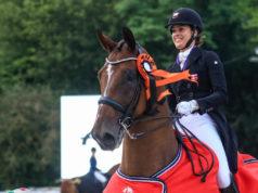 Der 16-jährige belgische Wallach ist bereits U25-Europameister unter Anne Mette Strandby Hansen 2020 geworden. In Zukunft soll er mit Nicola Ahorner (K) glänzen. © Petra Kerschbaum