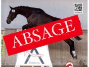 Das westösterreichische Ferispringchampionat ist abgesagt! Corona und Herpes machten eine Durchführung 2021 unmöglich. © Pferdezucht Österreich