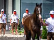 """Das österreichische Team mit Equipe-Chefin Uschi Barth wartet im Hintergrund auf das """"Fit to compete"""" der Tierärzte in Tokio. © Arnd Bronkhorst"""