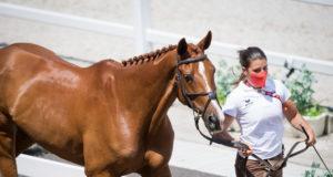 Schritt gehen, Vortraben, Kontrolle im Stehen: die Pferde werden bei den Olympischen Spielen regelmäßig auf Gesundheit und Fitness kontrolliert. Katrin Khoddam-Hazratis DSP Cosma ist fit! ©️ Arnd Bronkhorst