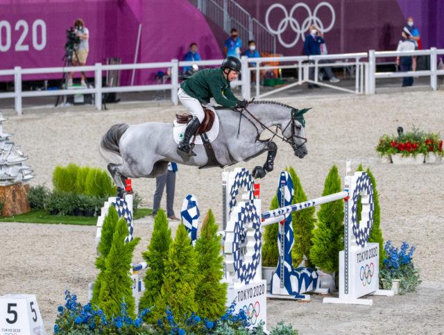 Der neunjährige Schimmelwallach Kilkenny begann während des Einzel-Finales der Olympischen Spiele in Tokio aus beiden Nasenlöchern zu bluten. Es läuteten weder die Richter ab, noch kam die Blood-Rule zu tragen. ©️ Arnd Bronkhorst
